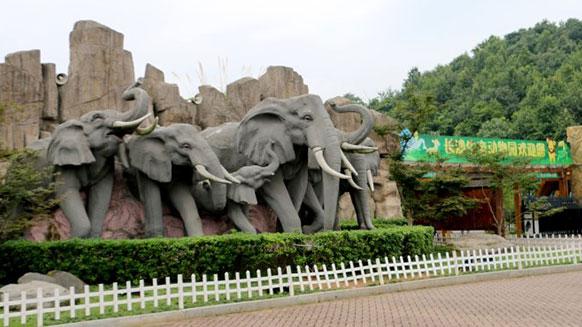 湘江电缆低压电力电缆进驻长沙生态动物园