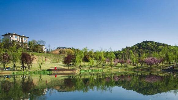 龙湖地产与湘江电缆达成中低压电力电缆采购合作