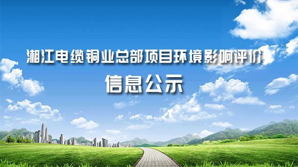 湘江电缆铜业总部项目环境影响评价信息公示